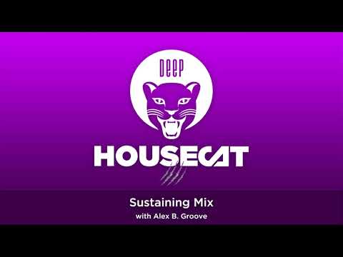 Deep House Cat Show - Sustaining Mix - with Alex B. Groove // incl. free download