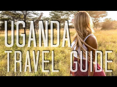 TRAVEL GUIDE UGANDA - MUST SEE- GORILLA TREKKING