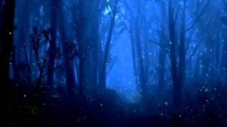Franz Liszt Klavierkonzert Nr. 1 ES-Dur quasi adagio