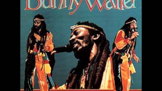 Bunny Wailer   Rootsman Skanking 1981   08   Rock