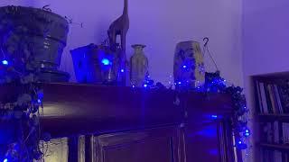 Fil lumineux extérieur animé 18m, 180 micro LED bleues vidéo