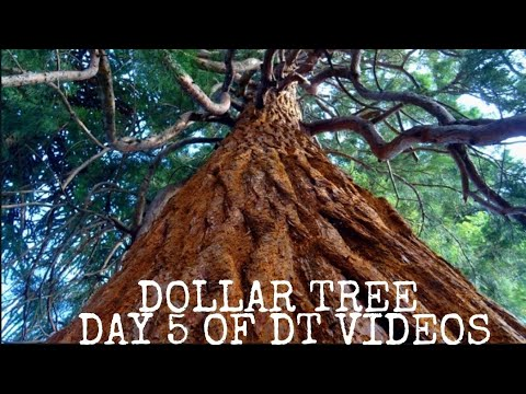 DOLLAR TREE 🌳 SHOP WITH ME PARTY SUPPLIES MAY 2019 🌳