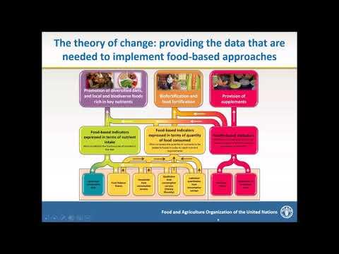 UN Network for SUN webinar series: FAO/WHO GIFT database