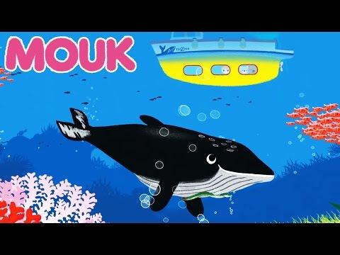 Mouk - Le caméléon & Les baleines (Madagascar)  HD | Découvre le monde avec Mouk