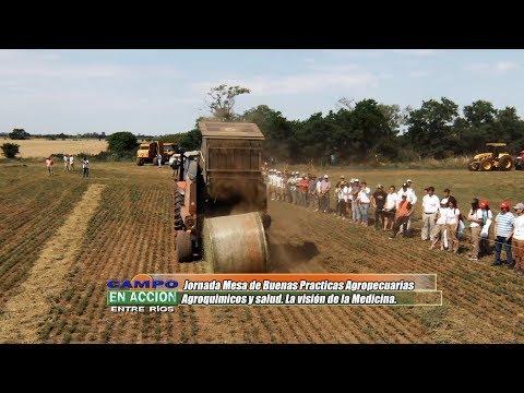 Jose Iachetta - Todo Agro - Jornadas Nacionales del Cultivo de Alfalfa 2019
