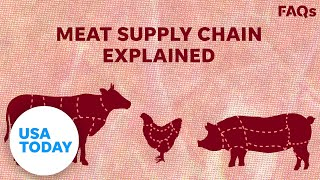 How COVID-19 affects US livestock supply chain   USA TODAY
