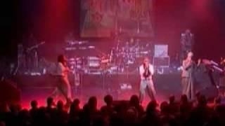 lms - zion gates (live)