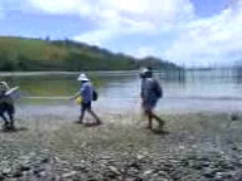 a walk in canton island