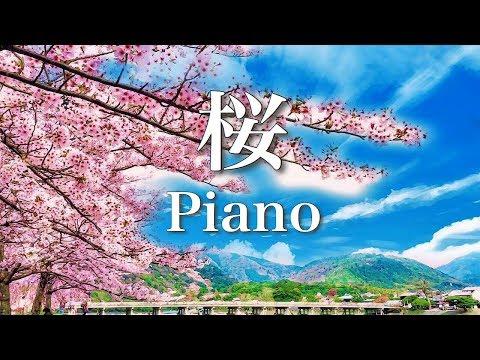 勉強用・作業用BGM【春を願う、癒しのピアノ曲】ゆったりリラックス音楽