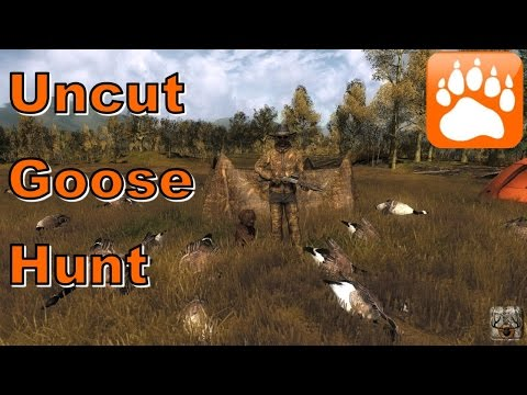 Uncut Goose Hunt | theHunter 2016