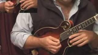 Crosspicking on the mandolin
