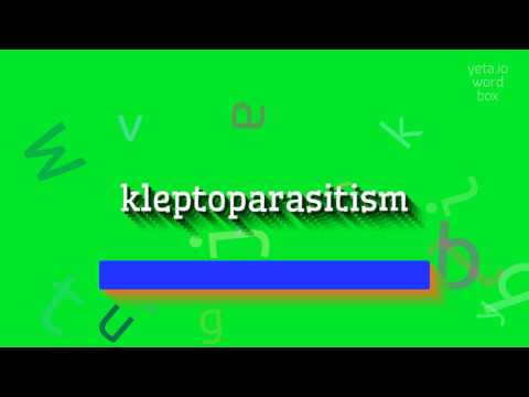 "How to say ""kleptoparasitism""! (High Quality Voices)"