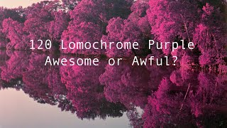 One Roll of 120 Lomochrome Purple. Is it AWESOME or AWFUL???