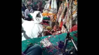 Gopal Kapadvanj