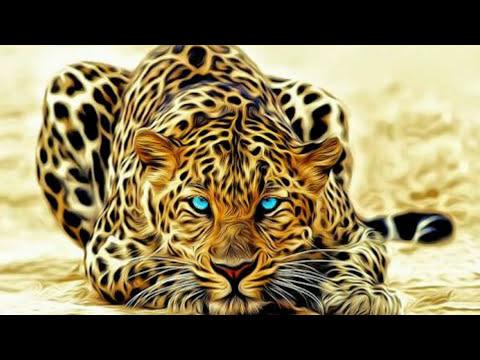 How To Make 3d Name Wallpaper In Hindi Urdu Youtube
