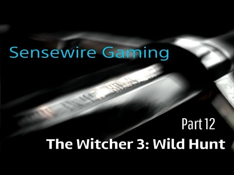 The Witcher 3: Wild Hunt (Let's Play) Part 12 - Reclamation and Disappointments