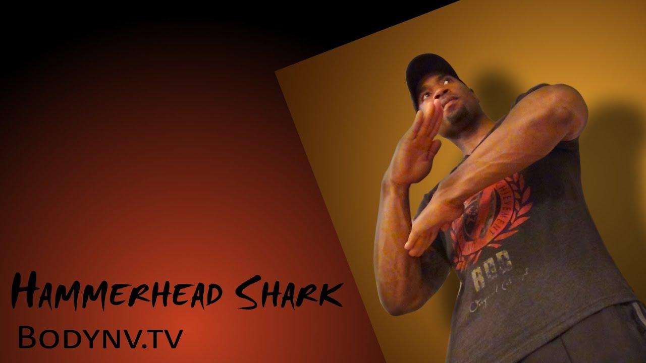 Workout Routines – Best Workouts – Bodynv.tv – Hammerhead Shark