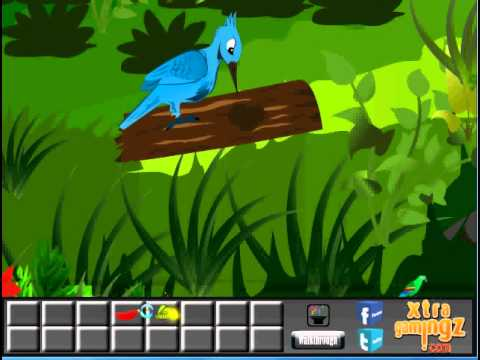 Green Parrot Escape Walkthrough – Xtragamingz.com