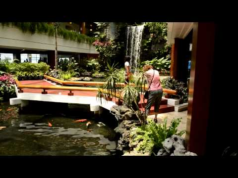 Waterfall and Fish at the White Swan Hotel, Guangdong