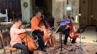 Trio de Basses MNM Asturias d