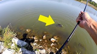 Unexpected GIANT Catch while Bank Fishing!!!