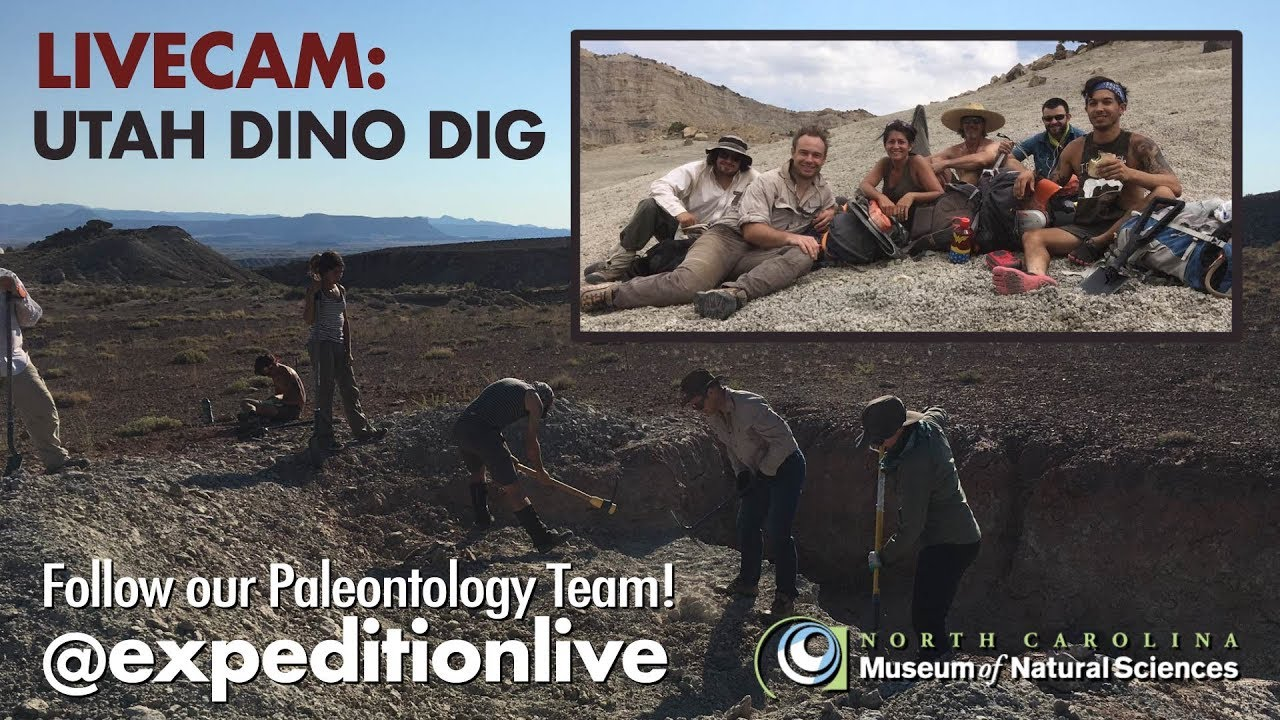 Dino Dig LIVECAM - 08/11/2017 - North Carolina Museum of Natural Sciences 2017-08-11 17:37