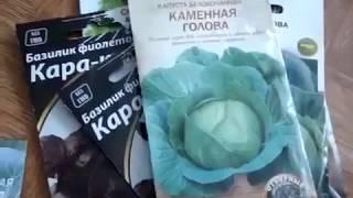 Купівля насіння в магазині OGOROD.ua (Розпакування №31)