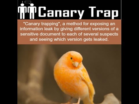 Michael Flynn's Canary Trap - Trump's Master Plan - Bannon Art of War Plan