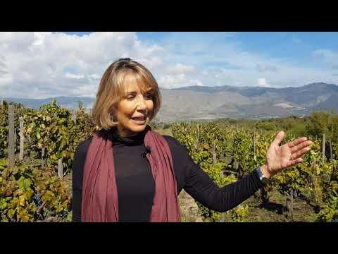 Palmento Costanzo - Le colate laviche dell'Etna