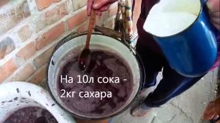 Как сделать домашнее вино из винограда. Часть №1