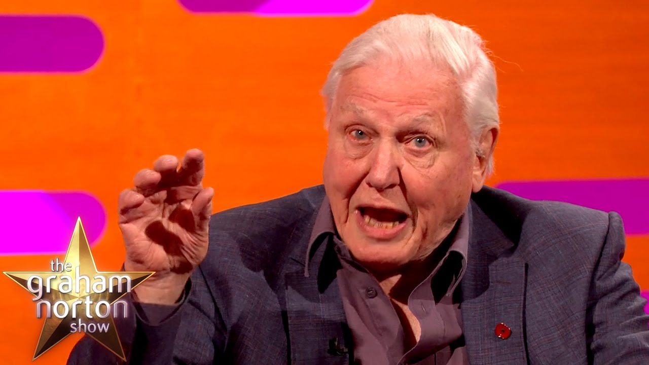 Sir David Attenborough Was Charged By A Rhino - The Graham ...