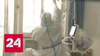 В России коронавируса нет: Роспотребнадзор предложил продлить отпуск гражданам КНР - Россия 24