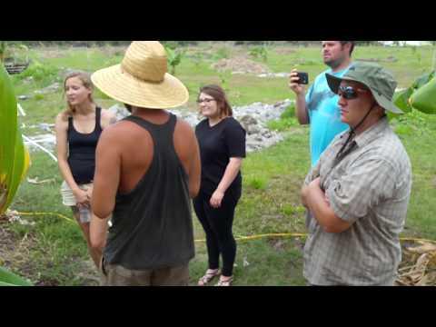 Rawbert The Banana Farmer | Banana Sanctuary | Robert Fulop | Tour & Potluck | Naples, FL |  3/12/16