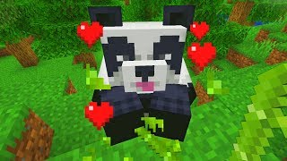 I finally found a panda in minecraft (how to tame)