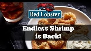 Red Lobster Endless Shrimps - It's Seafood Time!!!