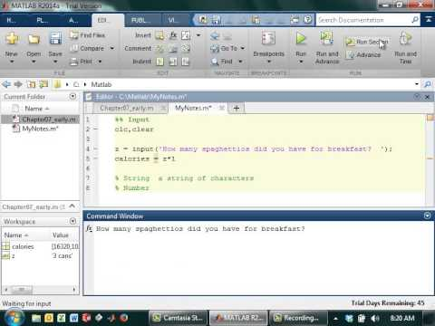 Writing Input Statements in Matlab