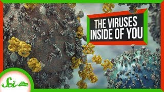 The Viruses That Shaped Humanity