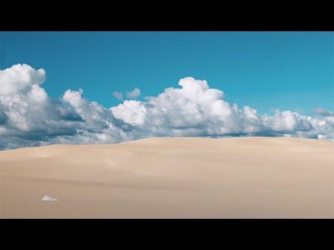 Moses Pelham mit Michael Patrick Kelly - Wir sind eins (Sagt ihr) (Band-Mix) (Official 3pTV) von YouTube · Dauer:  5 Minuten 14 Sekunden