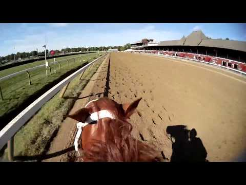 Jason works a McLaughlin horse wearing our prototype dual camera at Saratoga