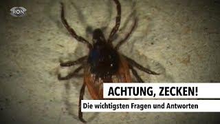 Achtung, Zecken! | RON TV |