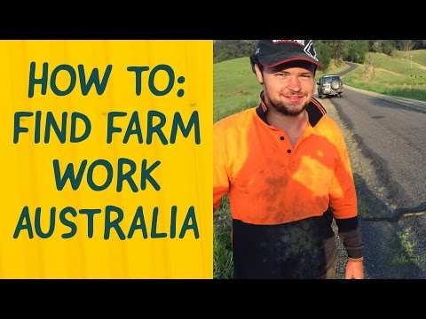How to find Farm Work in Australia (that pays well and counts for 2nd year visa)