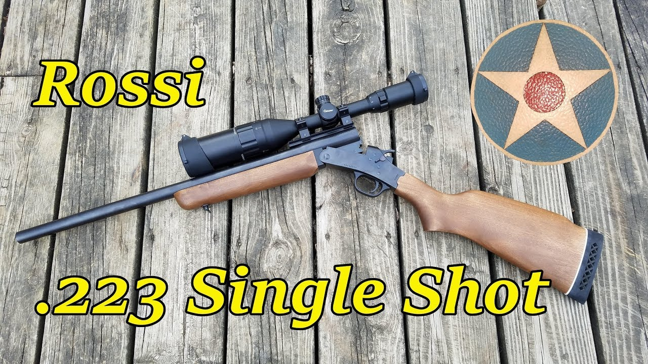 Rossi 223 Single Shot Rifle (First Impressions Review)