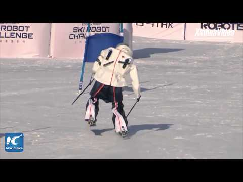 "Robot skiers tackle ""Olympic"" challenge in South Korea"