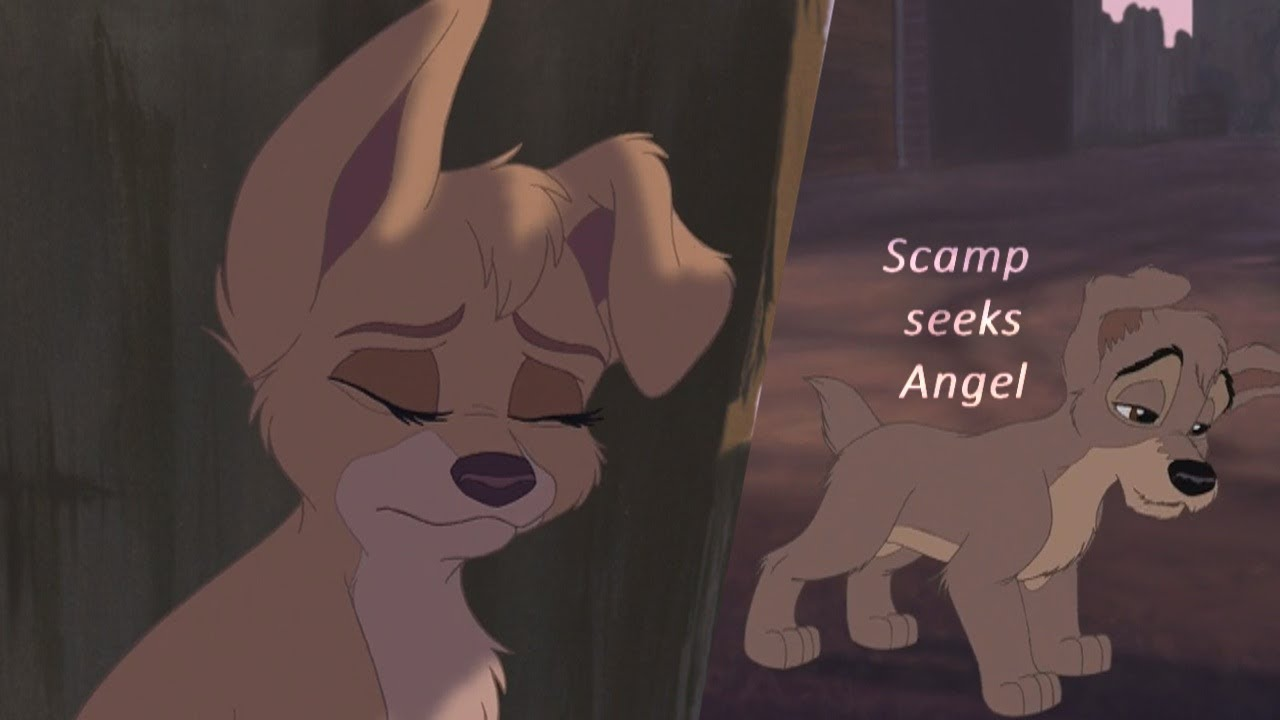 Lady And The Tramp 2 Scamp Seeks Angel Hd Youtube