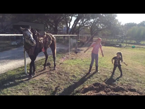 Horse Dances with Girls