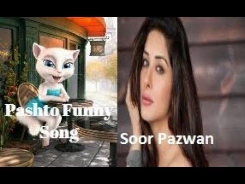 Soor Pezwan Ma Yada Wa Cat Pashto Song