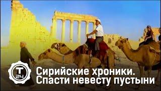 Сирийские хроники. Спасти невесту пустыни