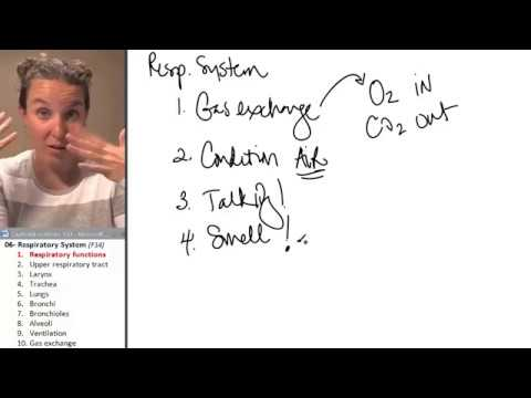 Respiratory system 1- Functions