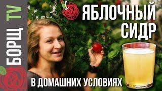 Яблочный сидр | Рецепт яблочного сидра из сока в домашних условиях