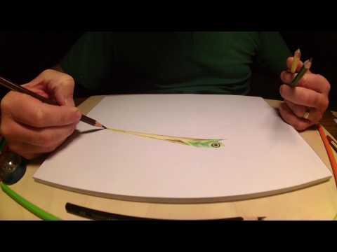 Rysowanie czapli kredkami / How to draw a heron with crayons